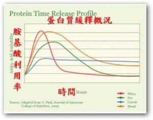 乳清蛋白何時吃最有效?
