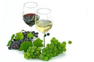 白藜蘆醇的6種功效與副作用(第5種大家都想知道)