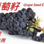 葡萄籽的5種功效及副作用(4點使用禁忌要留意)