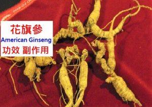 american-ginseng-benefits