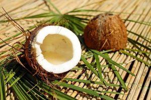 椰子油的6大過時迷思(第1點常被提到)