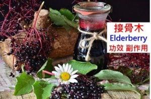 elderberry-benefits-side-effects