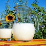 有益骨質疏鬆的4種保健食品(第1種非常重要)