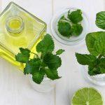 薄荷油(精油)的4種功效及副作用 (7大禁忌要注意)