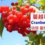 蔓越莓的7種功效與副作用(6點使用禁忌請留意)