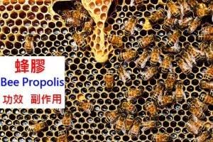 propolis-benefit-side-effect