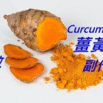 薑黃素的24種功效與副作用 (10種禁忌要小心)