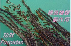 fucoidan-benefits-side-effects