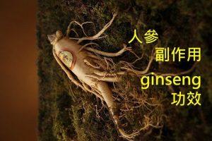 panax-ginseng-benefit