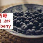 巴西莓的4種實證功效及副作用(4點使用禁忌要留意)