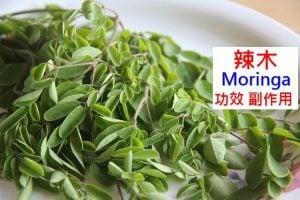 moringa-oleifera-benefits-side-effects