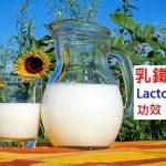 乳鐵蛋白的5種功效及副作用(2點使用禁忌要小心)