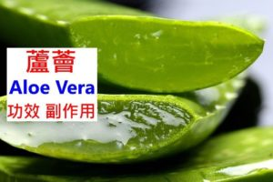 aloe-vera-benefits-side-effects