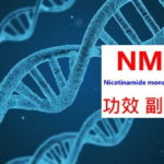 NMN的4種功效及副作用(抗老真的有效嗎?)