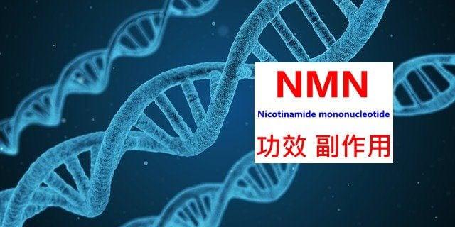 nmn-benefits-side-effects
